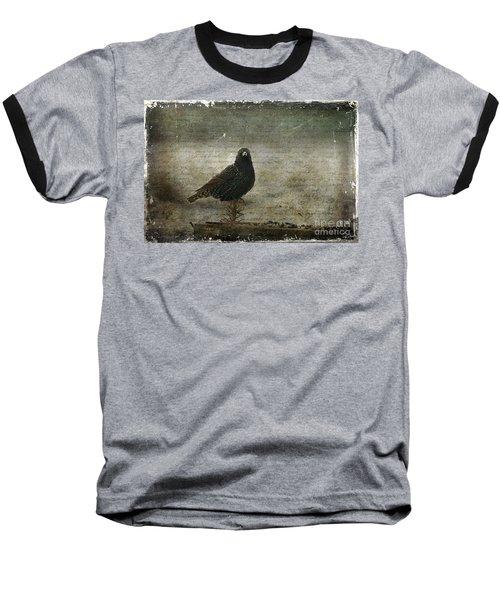 European Starling Baseball T-Shirt by Cindi Ressler