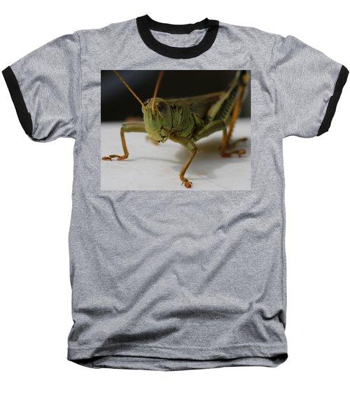 Grasshopper Baseball T-Shirt by Dan Sproul