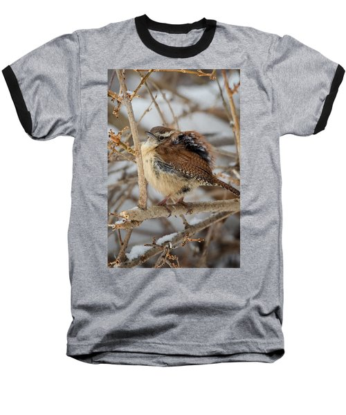 Grumpy Bird Baseball T-Shirt by Bill Wakeley