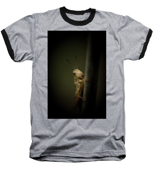 hop Baseball T-Shirt by Shane Holsclaw