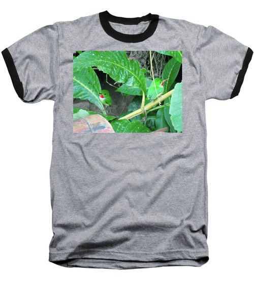 Jamaican Toadies Baseball T-Shirt by Carey Chen