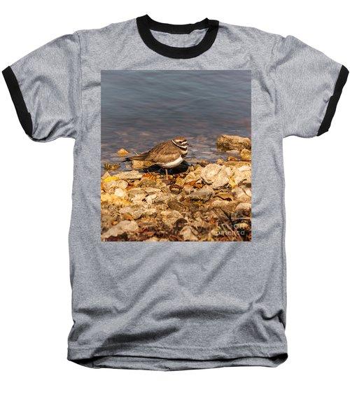 Kildeer On The Rocks Baseball T-Shirt by Robert Frederick