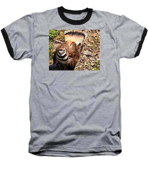 Killdeer On Its Nest Baseball T-Shirt by Chris Flees