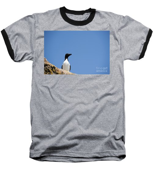 Look At Me Baseball T-Shirt by Anne Gilbert