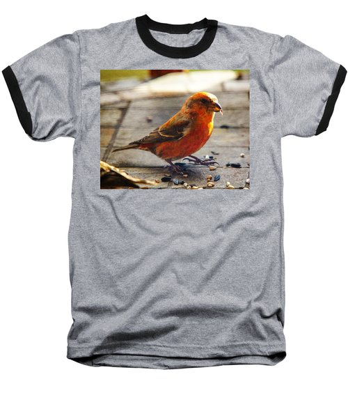 Look - I'm A Crossbill Baseball T-Shirt by Robert L Jackson