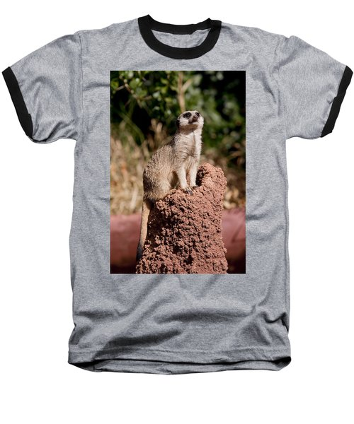 Lookout Post Baseball T-Shirt by Michelle Wrighton