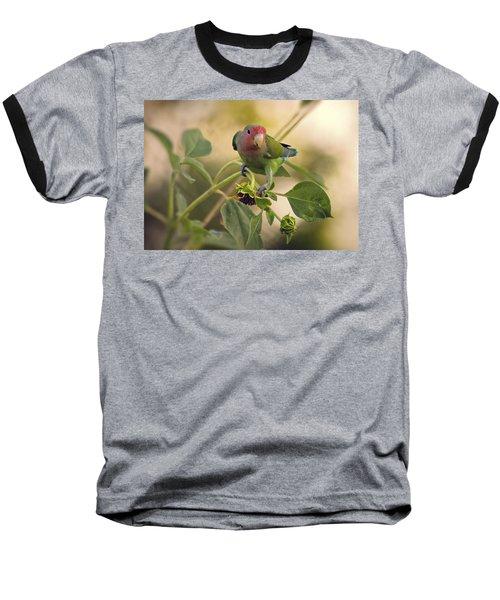 Lovebird On  Sunflower Branch  Baseball T-Shirt by Saija  Lehtonen