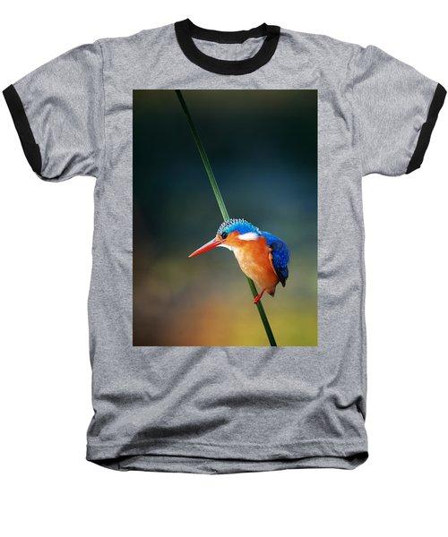 Malachite Kingfisher Baseball T-Shirt by Johan Swanepoel