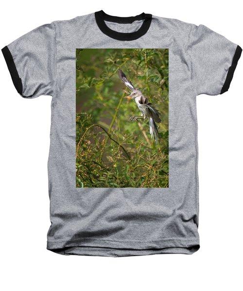Mockingbird Baseball T-Shirt by Bill Wakeley