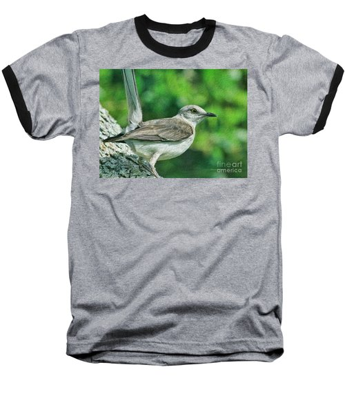 Mockingbird Pose Baseball T-Shirt by Deborah Benoit
