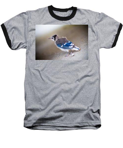 one day...I will fly Baseball T-Shirt by Shane Holsclaw