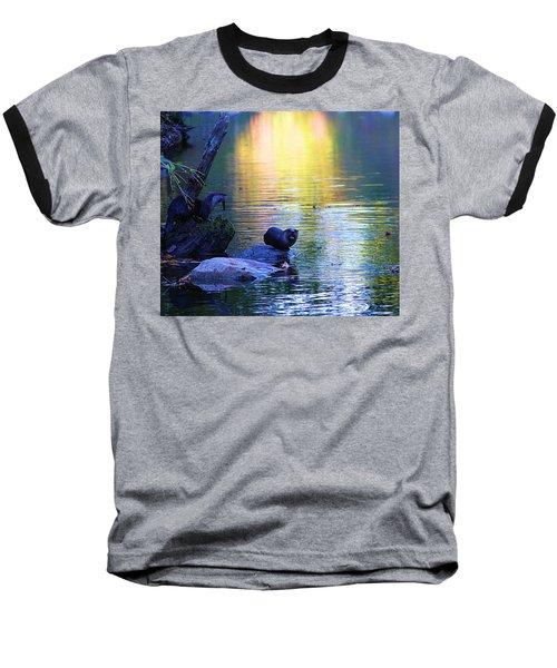 Otter Family Baseball T-Shirt by Dan Sproul