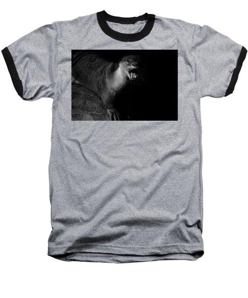 Otter Wars Baseball T-Shirt by Martin Newman