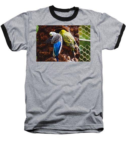 Parakeets Baseball T-Shirt by Pati Photography