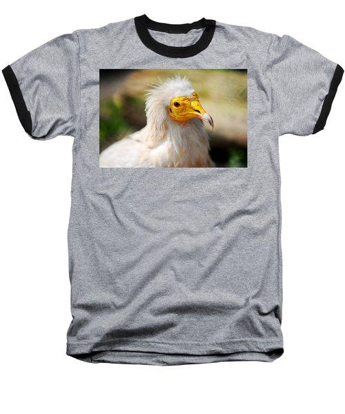 Pharaoh Chicken. Egyptian Vulture Baseball T-Shirt by Jenny Rainbow