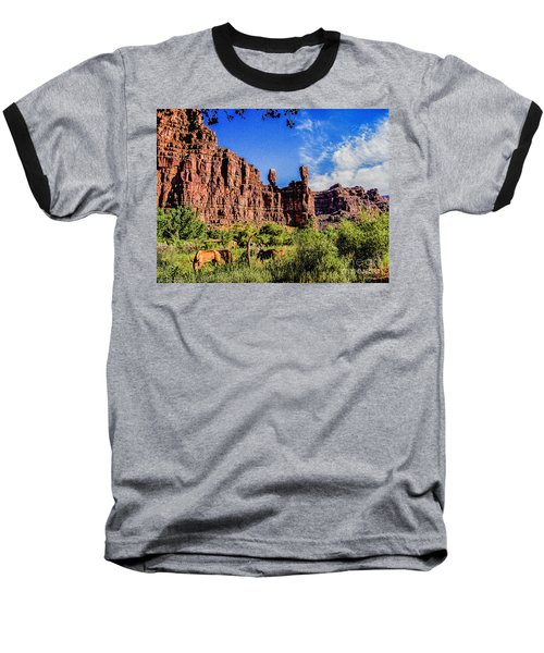 Private Home Canyon Dechelly Baseball T-Shirt by Bob and Nadine Johnston
