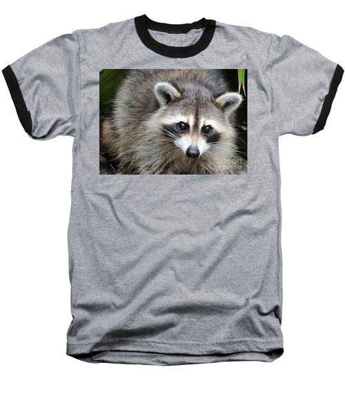 Raccoon Eyes Baseball T-Shirt by Carol Groenen
