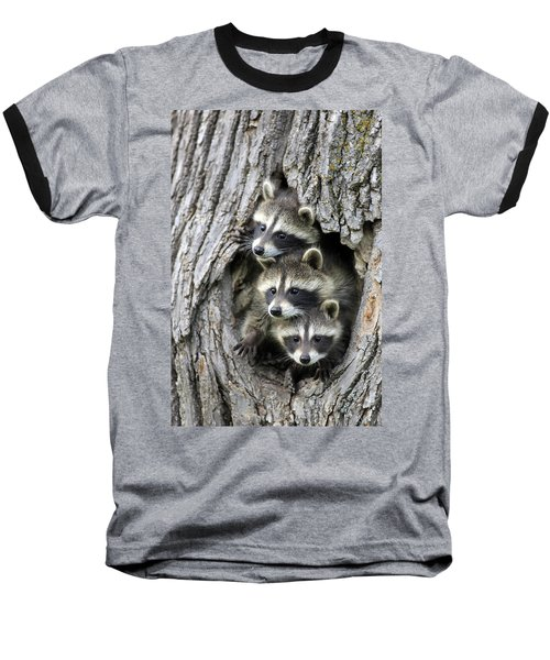 Raccoon Trio At Den Minnesota Baseball T-Shirt by Jurgen & Christine Sohns