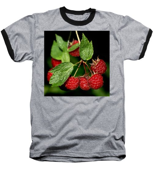 Raspberries Baseball T-Shirt by Nikolyn McDonald