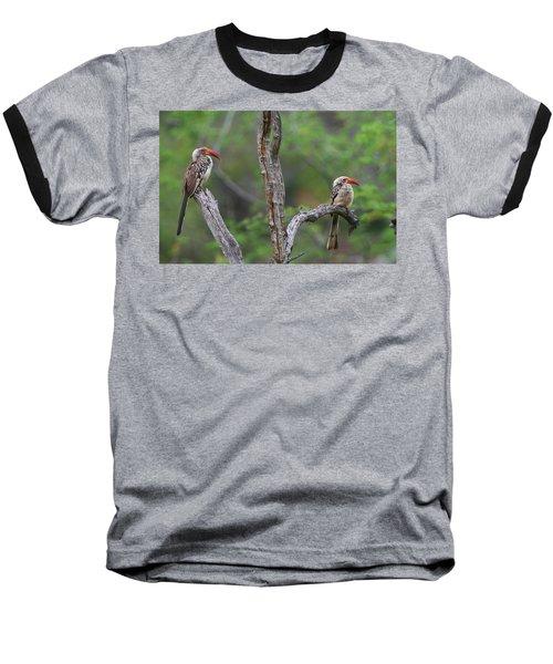 Red-billed Hornbills Baseball T-Shirt by Bruce J Robinson