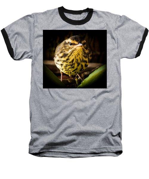 Round Warbler Baseball T-Shirt by Karen Wiles