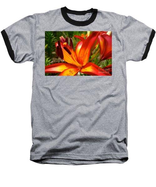 Royal Sunset Lily Baseball T-Shirt by Jacqueline Athmann