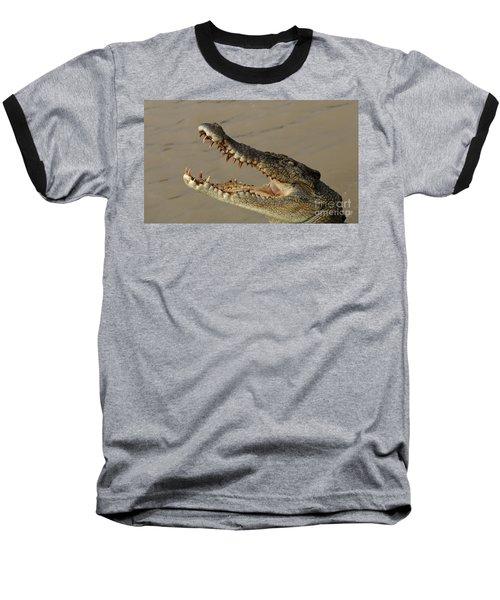 Salt Water Crocodile 1 Baseball T-Shirt by Bob Christopher