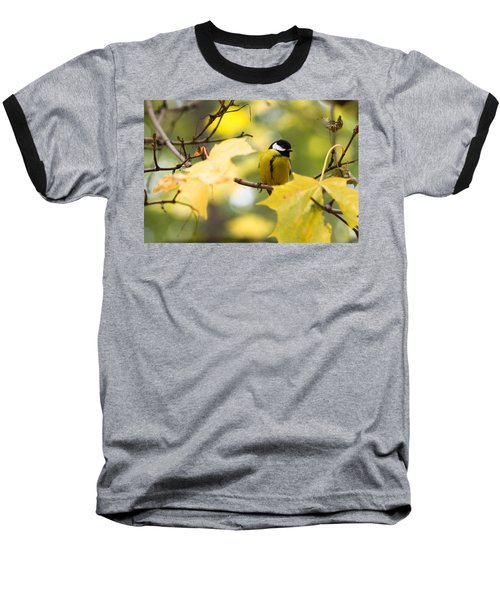Sensibly Dressed - Featured 3 Baseball T-Shirt by Alexander Senin