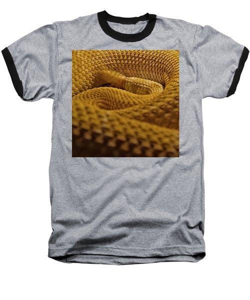 Shake Your Money Maker Baseball T-Shirt by Nathan Larson