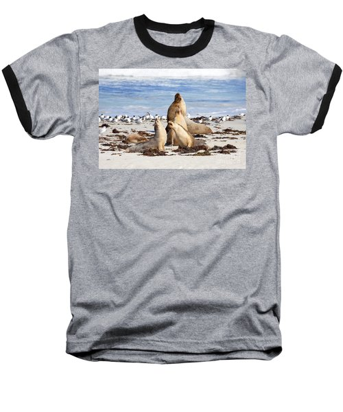 The Choir Baseball T-Shirt by Mike Dawson