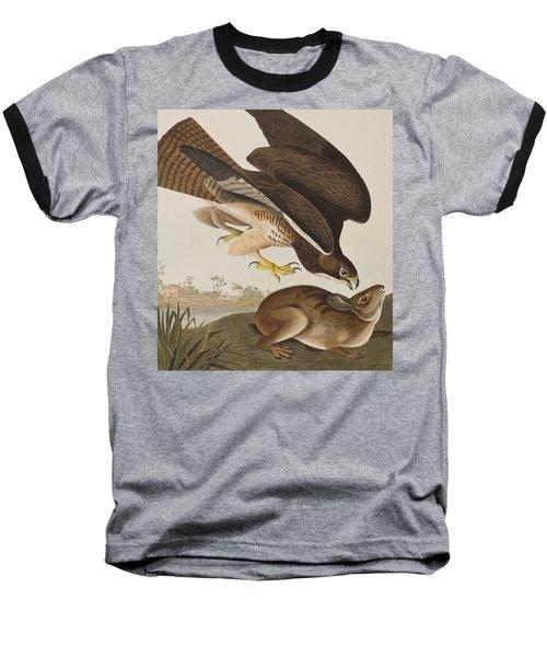 The Common Buzzard Baseball T-Shirt by John James Audubon