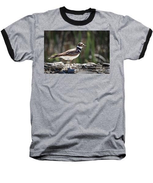 The Killdeer Baseball T-Shirt by Robert Bales