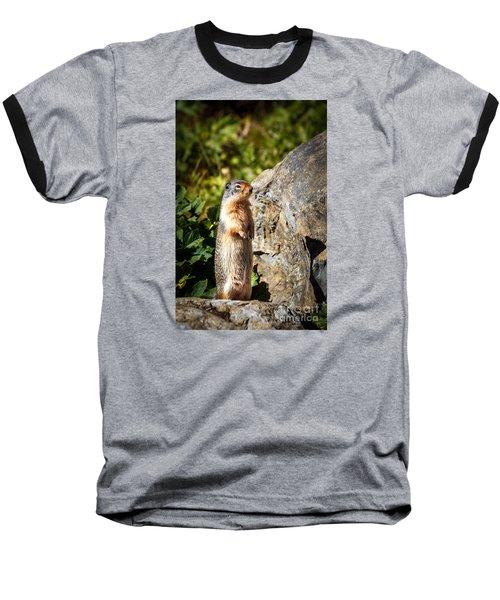 The Marmot Baseball T-Shirt by Robert Bales