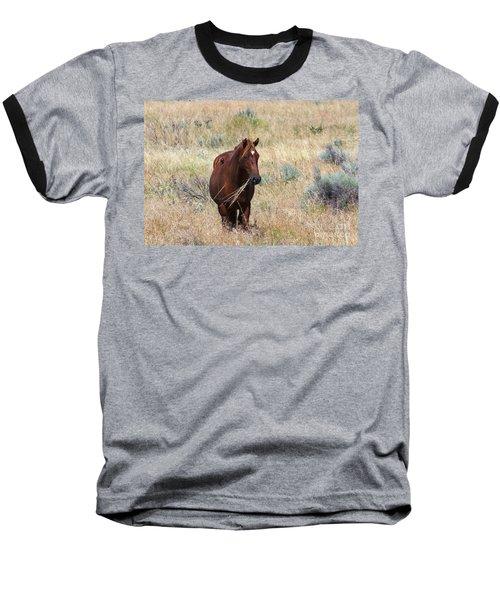 The Odd Couple Baseball T-Shirt by Mike  Dawson