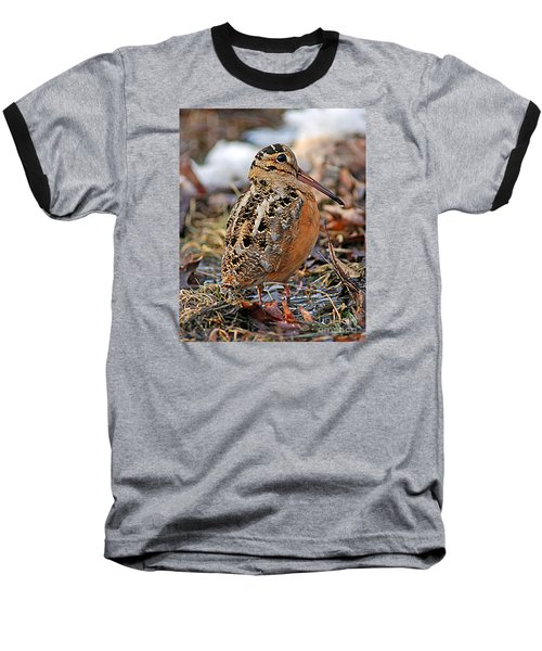 Timberdoodle The American Woodcock Baseball T-Shirt by Timothy Flanigan