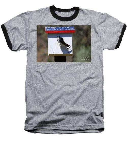 Tree Swallow Home Baseball T-Shirt by Mike  Dawson