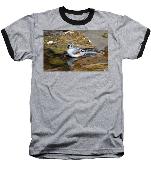 Tufted Titmouse In Pond Baseball T-Shirt by Sandy Keeton
