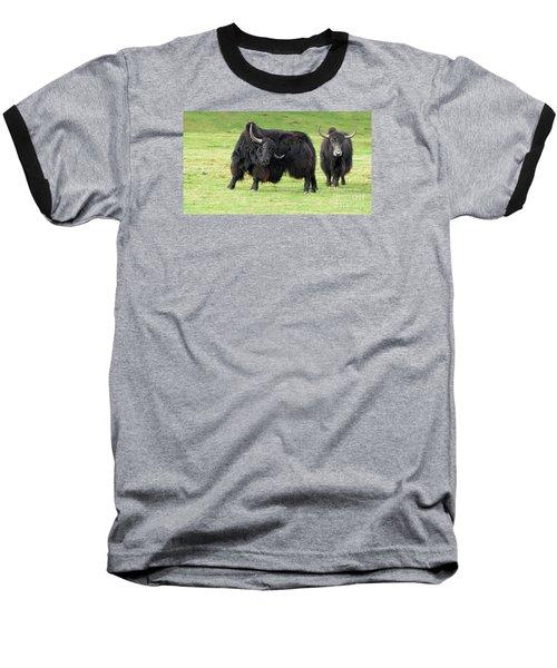Yaketty Yak Baseball T-Shirt by Liz Leyden