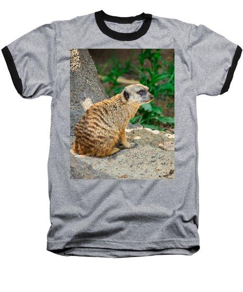 Watchful Meerkat Vertical Baseball T-Shirt by Jon Woodhams