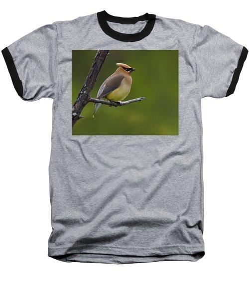 Wax On Baseball T-Shirt by Tony Beck