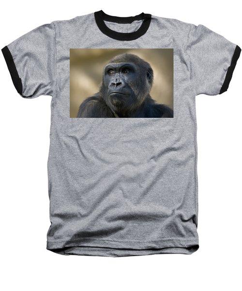 Western Lowland Gorilla Portrait Baseball T-Shirt by San Diego Zoo