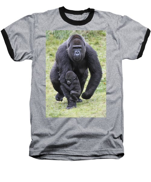 Western Lowland Gorilla Walking Baseball T-Shirt by Duncan Usher