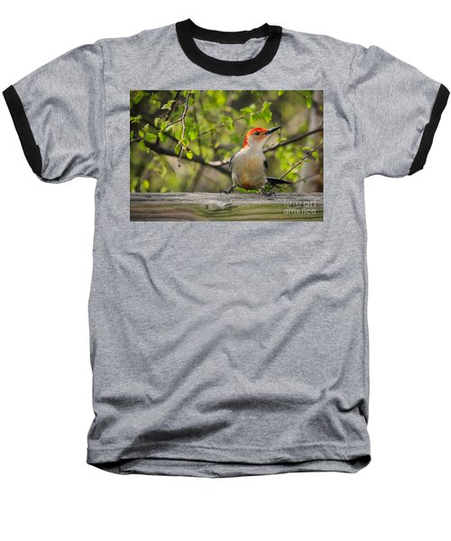 Which Way Did They Go Baseball T-Shirt by Lois Bryan