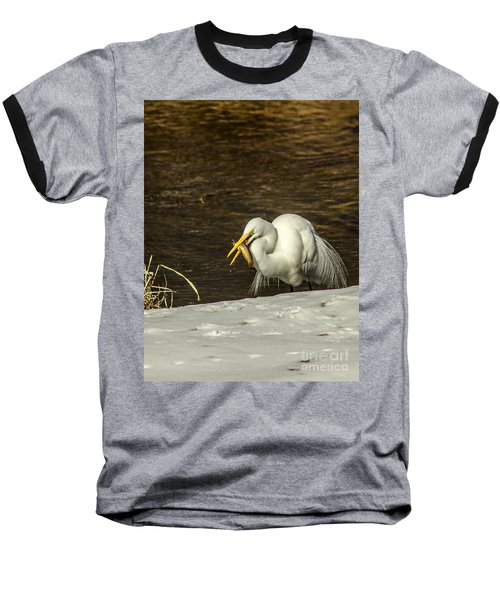 White Egret Snowy Bank Baseball T-Shirt by Robert Frederick