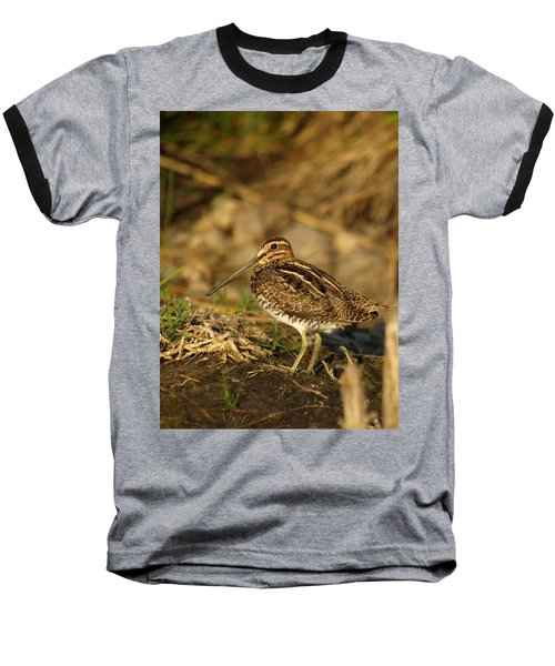 Wilson's Snipe Baseball T-Shirt by James Peterson