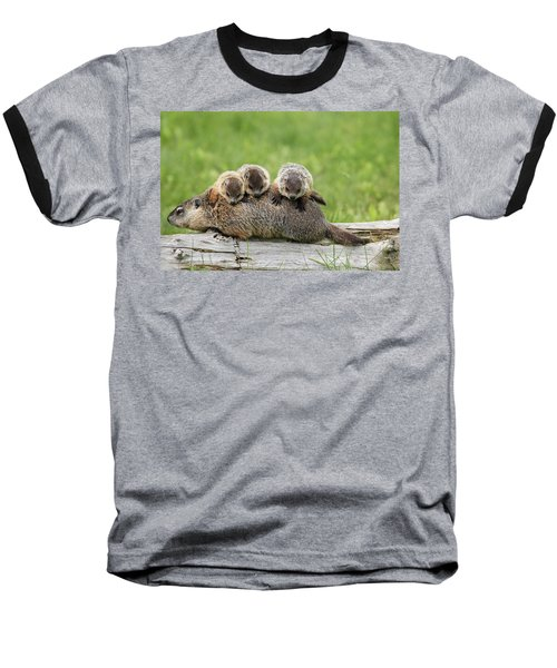 Woodchuck Carrying Young Minnesota Baseball T-Shirt by Jurgen & Christine Sohns