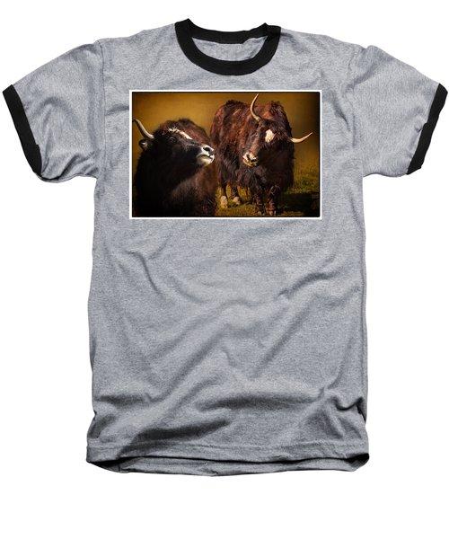 Yak Love Baseball T-Shirt by Priscilla Burgers