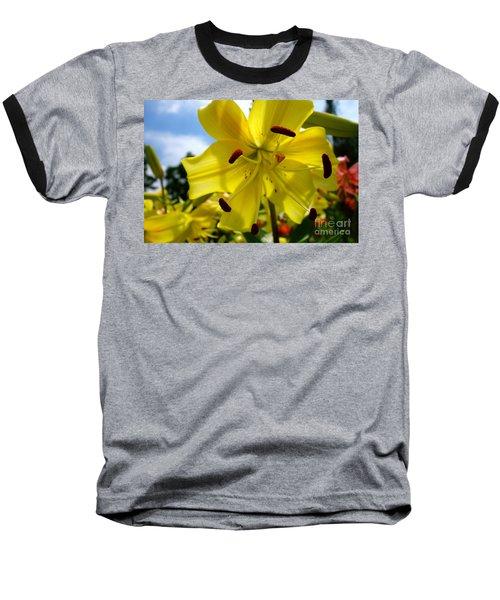 Yellow Whopper Lily 2 Baseball T-Shirt by Jacqueline Athmann