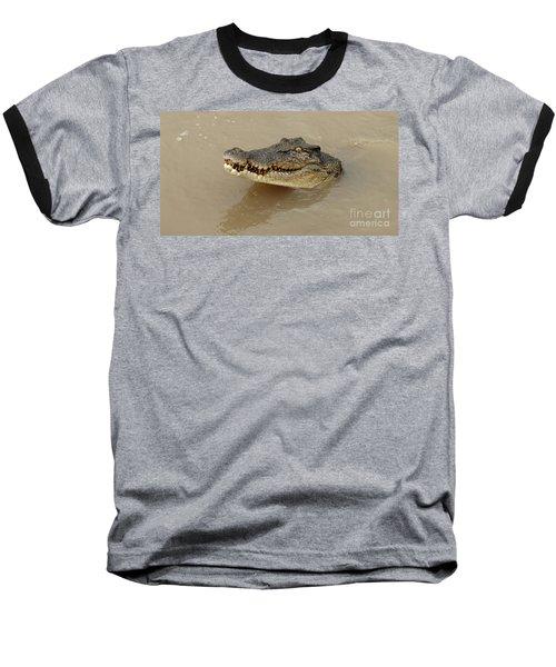 Salt Water Crocodile 3 Baseball T-Shirt by Bob Christopher