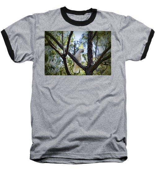 Sulphur Crested Cockatoo Baseball T-Shirt by Douglas Barnard